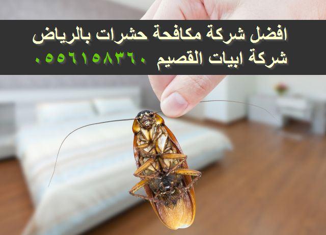 افضل شركة مكافحة حشرات بالرياض